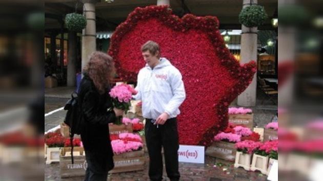 La guerra de las rosas contra el VIH y el sida