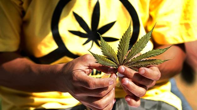 Perú: llaman a debatir la legalización de la marihuana