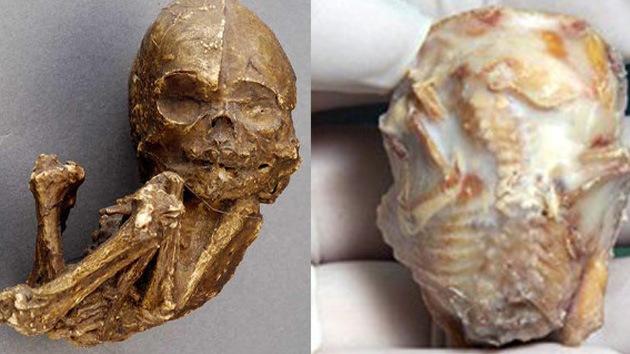 Anciana pare un bebé fósil 56 años después