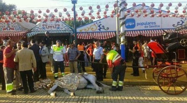 La otra cara de las fiestas españolas: Denuncian muertes de caballos extenuados