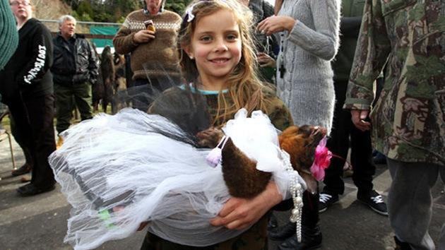 FOTOS: Concurso de 'belleza muerta'... con zarigüeya