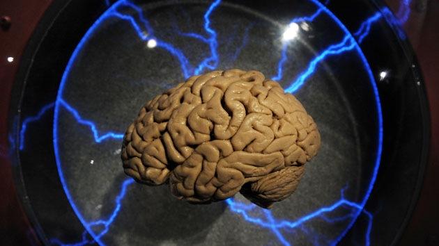 Investigadores aprenden a eliminar los malos recuerdos