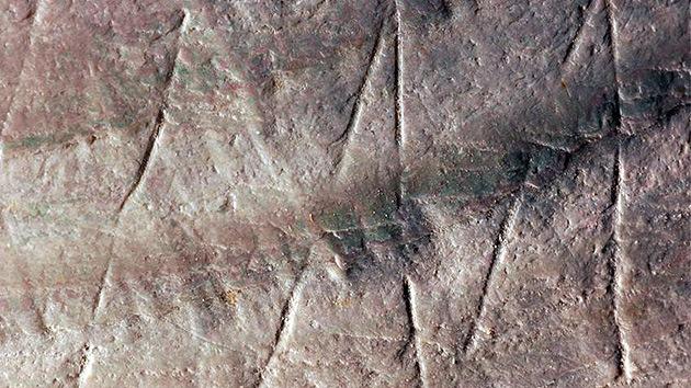 Descubren el dibujo más antiguo de la humanidad en la superficie de una concha