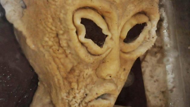 Dudosas informaciones sobre hallazgos de extraterrestres invaden los medios