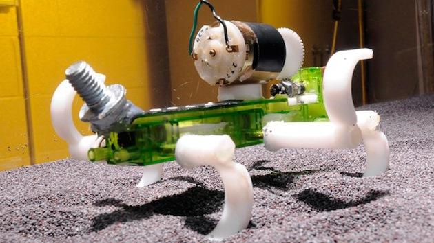 Crean un robot-lagarto capaz de correr por la arena
