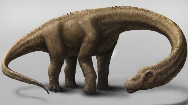 """Gigante que """"no temía a nada"""": descubren un dinosaurio que pesaba más que un Boeing 737"""