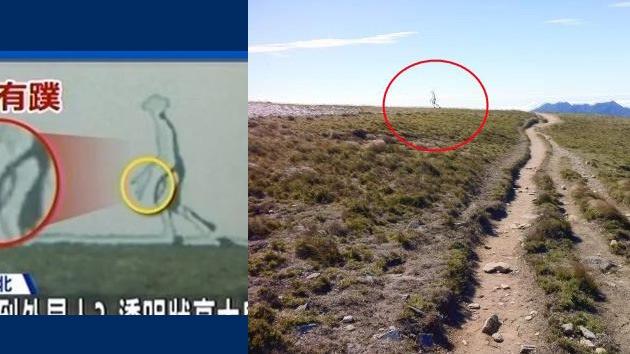 ¿Fotomontaje?: Imagen de un 'extraterrestre fantasma', en el punto de mira de internautas