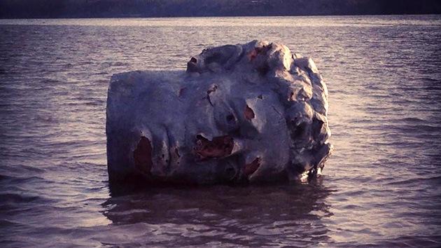 Rompecabezas sobre un río de EE.UU.: hallan flotando una enorme cabeza grecorromana