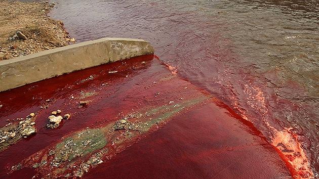 En tan solo 60 años desaparecieron 28.000 ríos en China