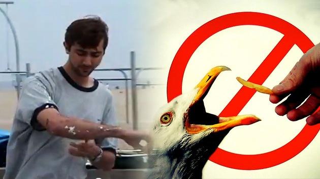 VIDEO: Broma con laxante para gaviotas deja a los veraneantes hasta arriba de 'suerte'