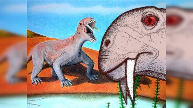 Descubren en Brasil una nueva especie de animal prehistórico