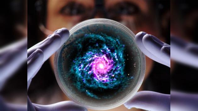 Descubren una posible 'semilla de la vida' de origen extraterrestre