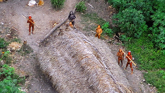 La tribu que recientemente salió al mundo regresa a la selva a pesar de los peligros