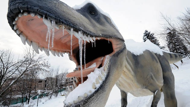 Descubren pruebas de que fue un invierno nuclear el que acabó con los dinosaurios