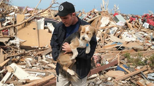 Ladridos bajo los ladrillos: Al rescate de las mascotas tras el tornado en Oklahoma