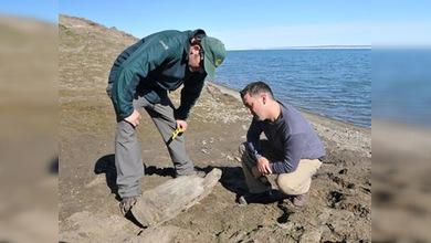 En el Ártico hallan buque perdido hace 150 años