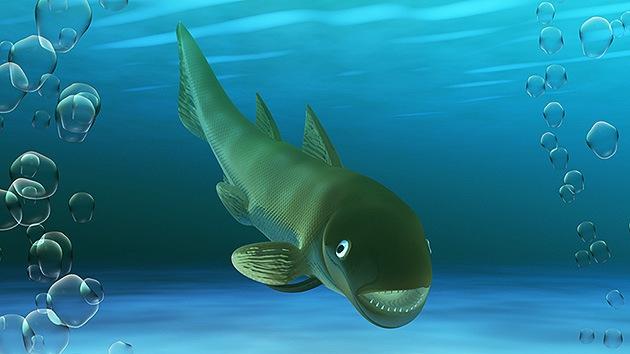 Hallan en España una nueva especie de 'tiburón' de unos 408 millones de años