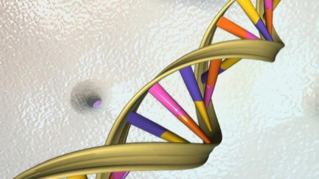 EE.UU. vigilará a la gente mediante los datos del ADN