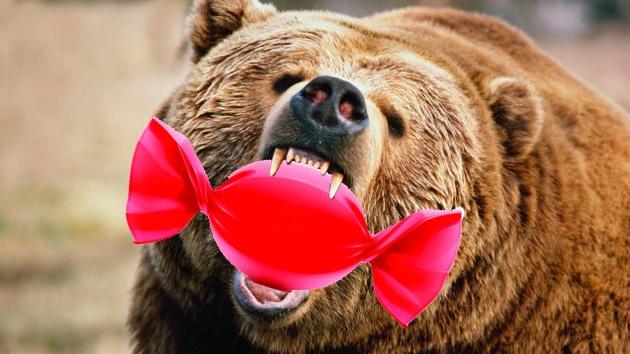 Video: Un oso goloso asalta una chocolatería