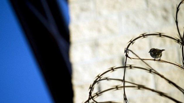 Cuba 'libera' sus cárceles de números falsos