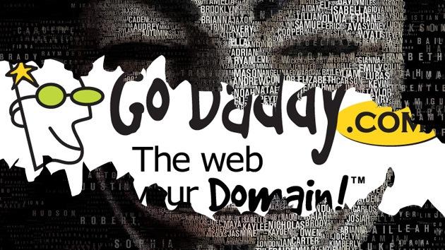 Se cae el mayor registrador de dominios GoDaddy por un ataque del Anonymous