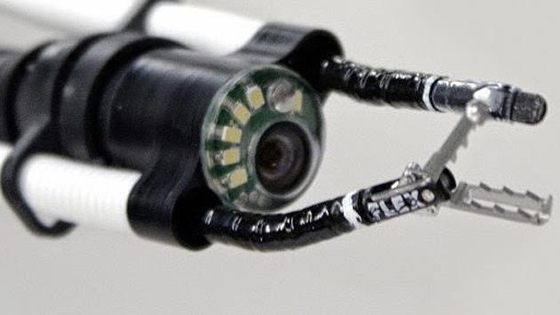 Los robots 'se cuelan' en el cuerpo: Una serpiente, nueva arma para los cirujanos
