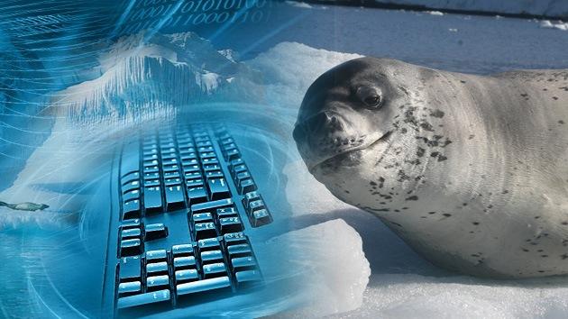 Lanzan un ambicioso proyecto de Internet para el Ártico