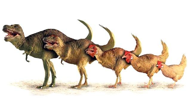 ¿Parque Jurásico contemporáneo?: Un 'pollosaurio' aparecería en cinco años