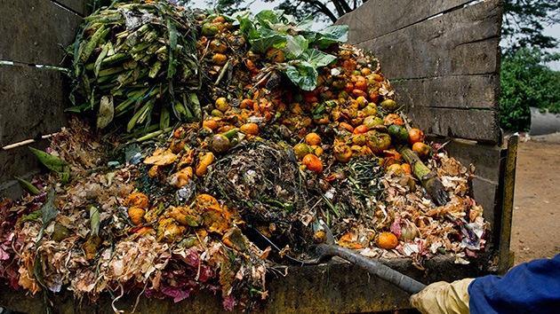 La tercera parte de la comida del mundo se desperdicia