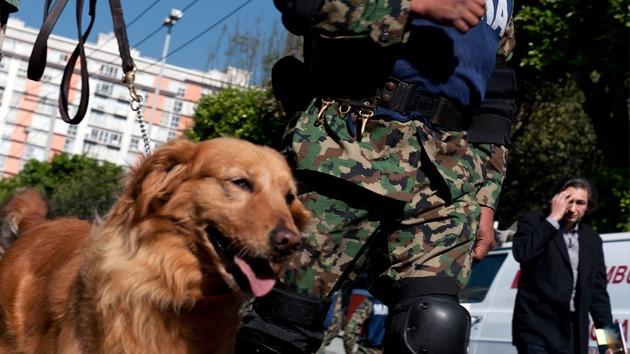 Un perro salva a una niña mexicana de ser secuestrada