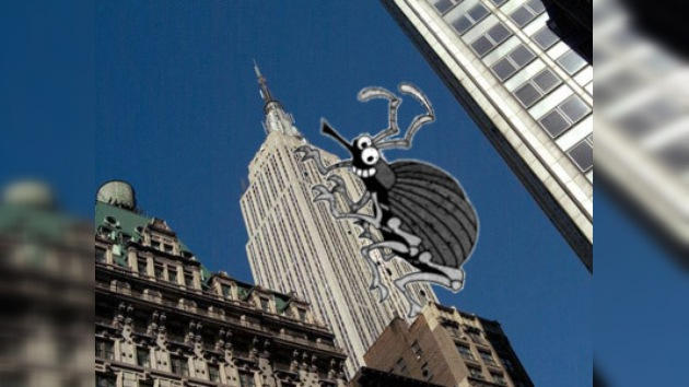 Empire State Building: de King Kong a chinches