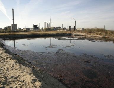 Greenpeace: Rusia está al borde de una catástrofe ecológica