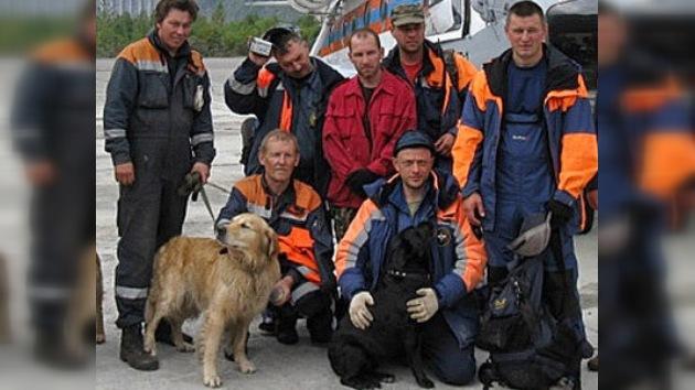 Perros entrenados siguen con las labores de rescate en la mina Raspádskaya