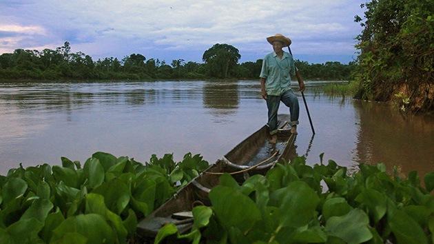 Indígenas brasileños no quieren que Coca-Cola compre el azúcar de sus tierras