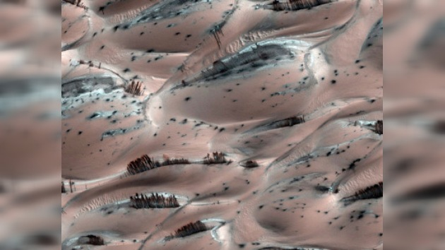 """Hallan """"abetales"""" en Marte"""