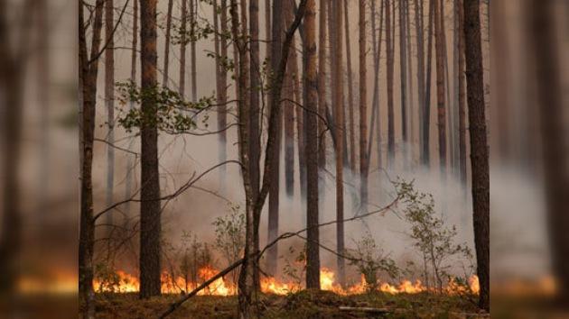 El rey Juan Carlos ofreció a Medvédev ayuda para la extinción de incendios