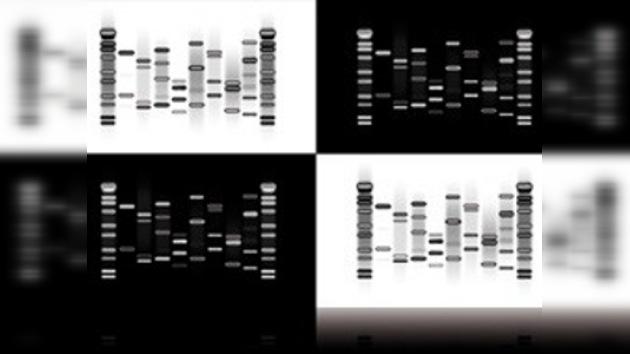 Un nuevo regalo de lujo para los narcisistas: una foto de su ADN
