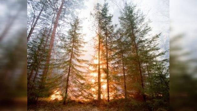La amenaza de los incendios sigue presente en Rusia