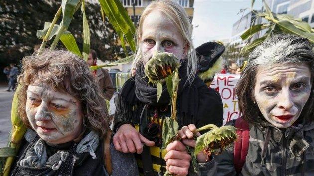 Fotos: Grito de protesta global contra Monsanto