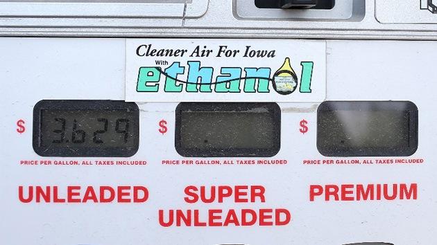 La ONU exige a EE.UU. que no produzca más etanol para evitar crisis alimentarias