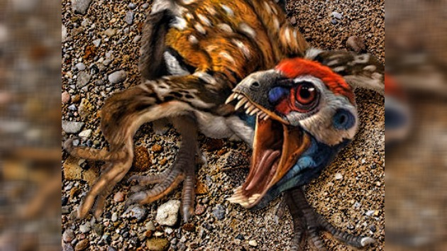 Hallados fósiles de dinosaurios que tenían plumas de color naranja