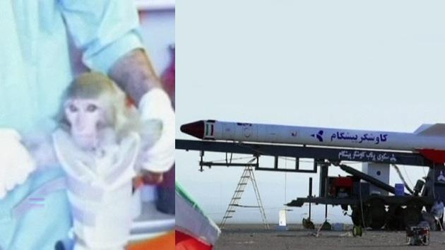 Video, Fotos: Irán lanza un mono al espacio