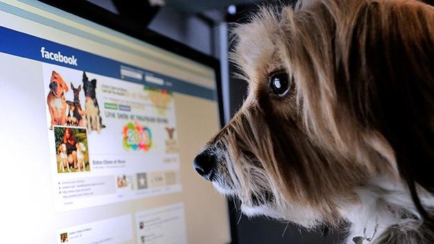 ¿Por qué creemos los bulos que circulan en Facebook?