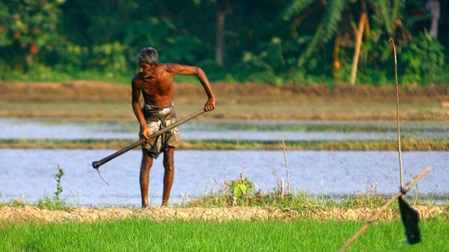 'Siembran' más desconfianza en Monsanto al relacionarla con una enfermedad mortal