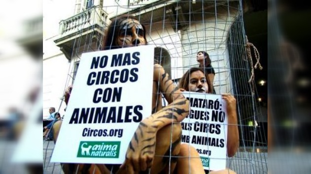 Activistas semidesnudas contra los circos que maltratan a los animales