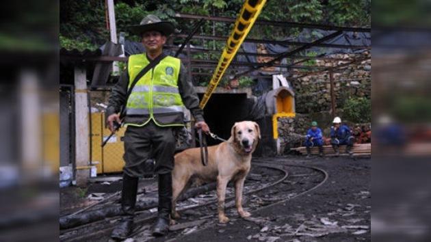 Una nueva explosión minera en Colombia dejó 5 muertos