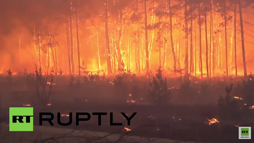 """Laut Ukraine kein Grund zur Panik - """"Waldbrand in Sperrzone von Tschernobyl unter Kontrolle gebracht"""""""