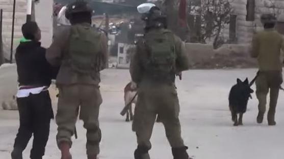 UNO-Einrichtungen erheben schwere Vorwürfe gegen israelische Sicherheitskräfte