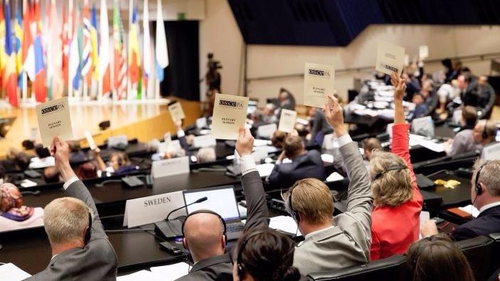 Neutralität auf Abwegen - OSZE positioniert sich im Ukraine-Konflikt auf Seiten Kiews