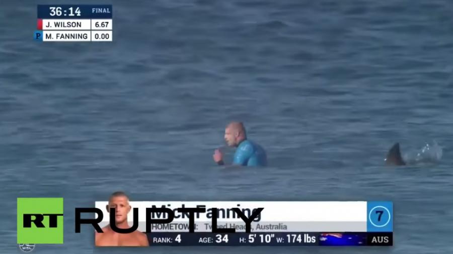 Südafrika: Vor laufender Kamera Haiangriff auf Weltmeister – Wie durch ein Wunder unverletzt
